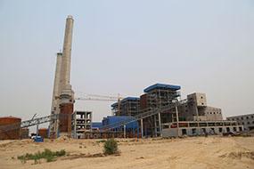 山东泉林150万吨秸杆项目